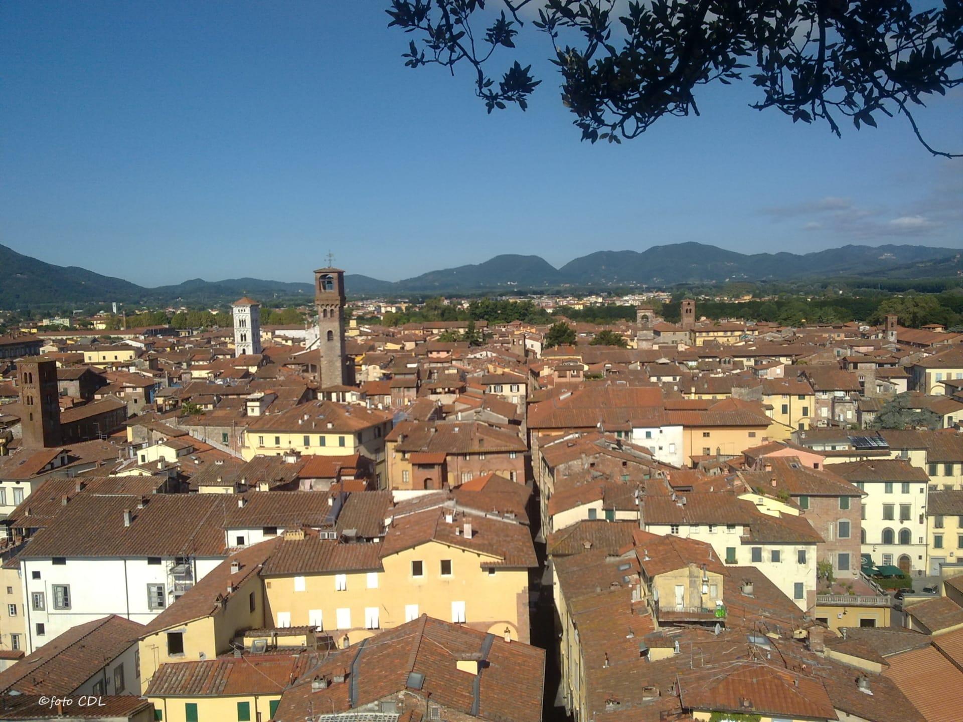 Lucca: veduta dalla Torre Guinigi