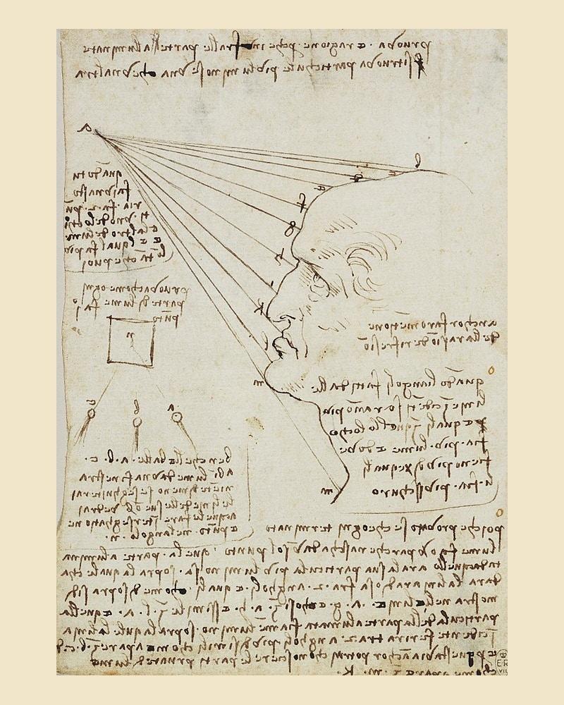 Leonardo da Vinci - Studio della luce sul volto - Royal collection
