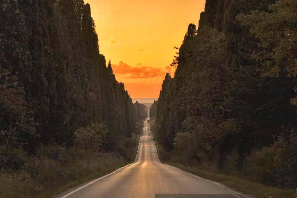 Viale di Bolgheri