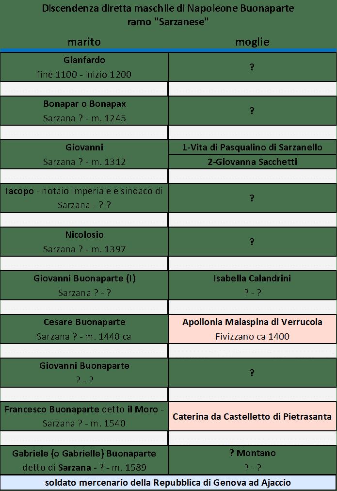 """Albero genealogico """"sarzanese"""" di Buonaparte"""